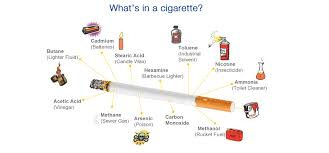 essay on cigarette smoking essay about smoking best writing help for you