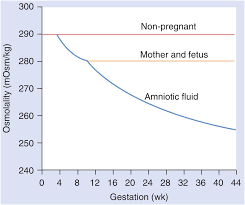 Normal Values In Pregnancy Content Last Reviewed 15th