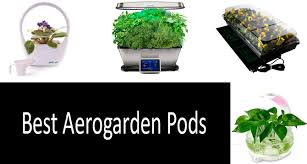 discover how to grow fresh herbs or flowers on your countertop year around without having a dirty garden mess a container grow light and a few plants are