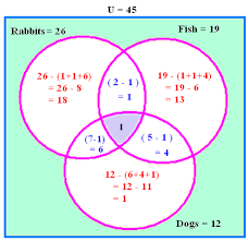 venn diagram math problem helpdream about doing homework  slope intercept word problems