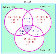 venn diagram math problem helpdream about doing homework  slope intercept word problems