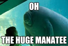 Oh The huge manatee - Overlord Manatee - quickmeme via Relatably.com