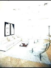 white shag rug. White Shag Rug Wonderful Living Room