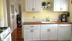Kitchen Cabinet Refacing Home Depot Canada Ikea Cabinets Vs Home ...