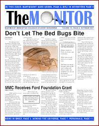School Newspaper Template Publisher Microsoft Word Newspaper Template Bravebtr