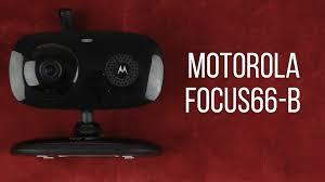 motorola focus 66. Распаковка motorola focus 66 focus