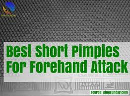 Nittaku Blade Chart Top 8 Short Pimple Rubbers For Aggresive Style Pingsunday