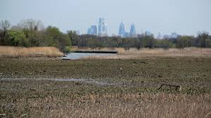 essay the role of water in preparing our cities for a better the john heinz national wildlife refuge at tinicum is less than 10 miles from center city