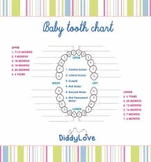 When Do Babies Get Teeth Chart 38 Printable Baby Teeth Charts Timelines Template Lab