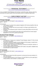 project manager cv template  forms amp samples for  it project manager cv template