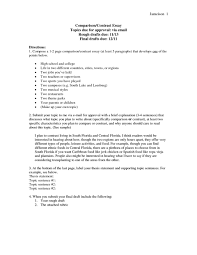 Compare And Contrast Essay Sample College High School And College Essay