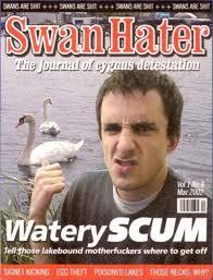 Image result for swan magazine