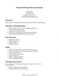 Great Marketing Manager Example Marketing Director Resume