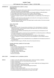 Mall Job Resume Mall Manager Resume Samples Velvet Jobs 1