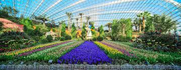 garden dome. Our Friendly Building Garden Dome