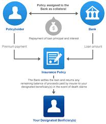 Insurance Agency Insurance Agency Chart Of Accounts