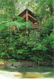 The Canopy Rainforest Treehouses U0026 Wildlife Sanctuary Jaggan The Canopy Treehouses