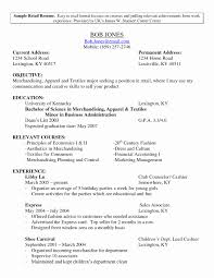 Resume Format Sales And Marketing Best Of Amusing Retail Marketing