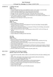 Helper Resume Samples Velvet Jobs