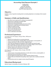 Modern Clerk Experience Resume Festooning Documentation Template