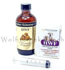 natural heartworm treatment. Natural Prevention Cat A Heartworm For Dogs Image . Treatment