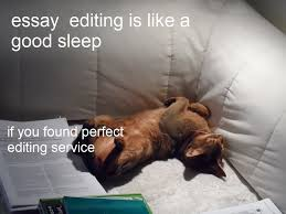 tools for editing essays online edusson com essay editing meme