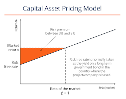 What Is Capm Capital Asset Pricing Model Formula Example
