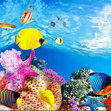Aquarium background paper HD picture 3d ...