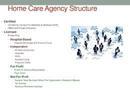 Home Care Agency Organizational Chart Home Health Care Ppt Download