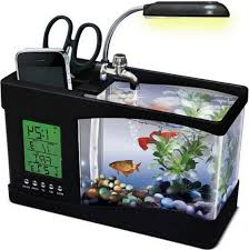 cool stuff for office desk. Interior Design, Cool Office Desk Toys Mini Aquarium With Orange Fish And Red Also Stuff For N