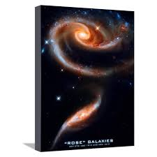 rose galaxies hubble space photo poster print stretched canvas print wall art on hubble images wall art with rose galaxies hubble space photo poster print stretched canvas print