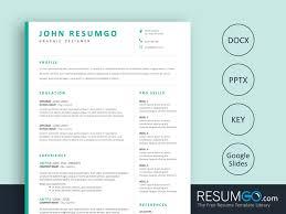 Bakchos Professional Resume Template Resumgocom