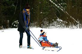 baby sled dad winter kids boy frost super best canada wooden sledge with harness