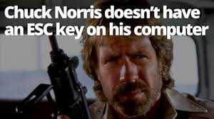 Chuck Norris Quotes Adorable Funny Chuck Norris Jokes Memes And Facts Chuck Norris Quotes