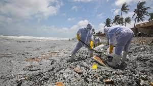logo!: Umweltkatastrophe vor Sri Lanka - ZDFtivi