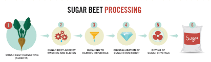 Sugar Stages Chart Purification Of Sugar