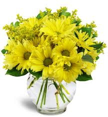 Small Picture Amazing Flower Delivery Kitchener Waterloo Home Decor Interior