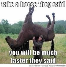 Tags: Meme Horse Meme | Asia's Meme via Relatably.com