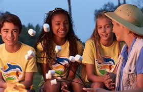 busch gardens summer camp. Perfect Busch 59 Overnight Camps At Busch Gardens Tampa Bay Inside Summer Camp