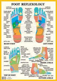 Foot Hand Reflexology Charts
