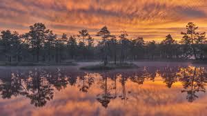 Wetlands HD (Page 1) - Line.17QQ.com