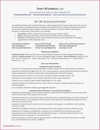 92 Assistant Principal Resume Templates Free Assistant Principal