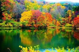 「五色沼」の画像検索結果