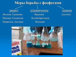 Презентация Исследовательский реферат Мифы чистоты   Исследовательский реферат Мифы чистоты Исследовательский