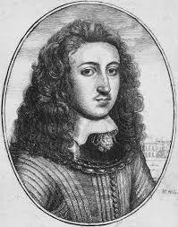 الشعر الطويل ويكيبيديا