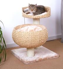 earth friendly furniture. Eco Friendly Cat Furniture Tree Available From Group Earth .