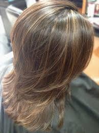 traditional foil highlights add dimension and movement to dark hair