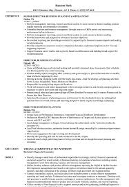 Director Business Planning Resume Samples Velvet Jobs