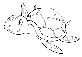 Cartoon Turtle Coloring Pages Cartoon Turtle G Pages Free Teenage