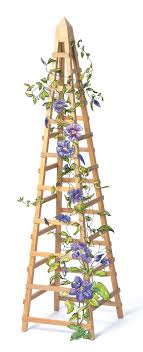 Small Picture How to Build a Vine Trellis DIY Garden Trellis Plans The old